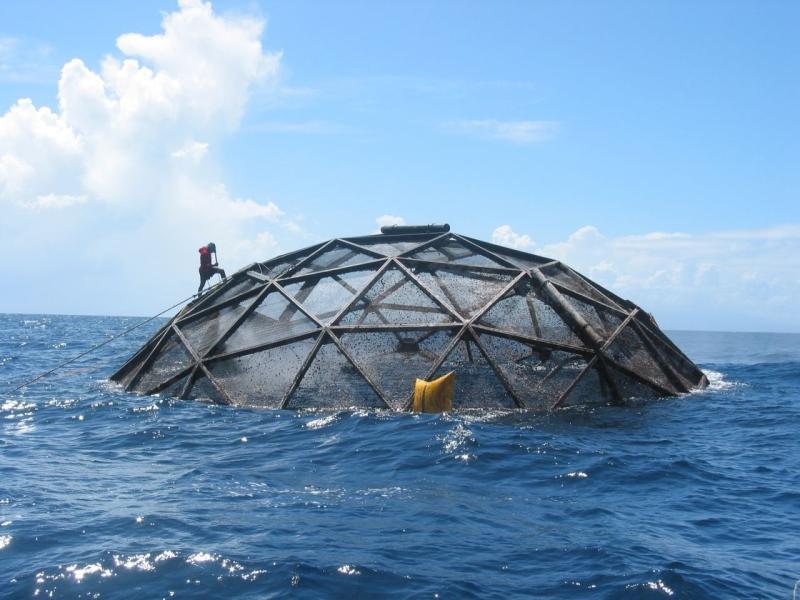 A diver walks up the side of an aquapod aquaculture net pen.