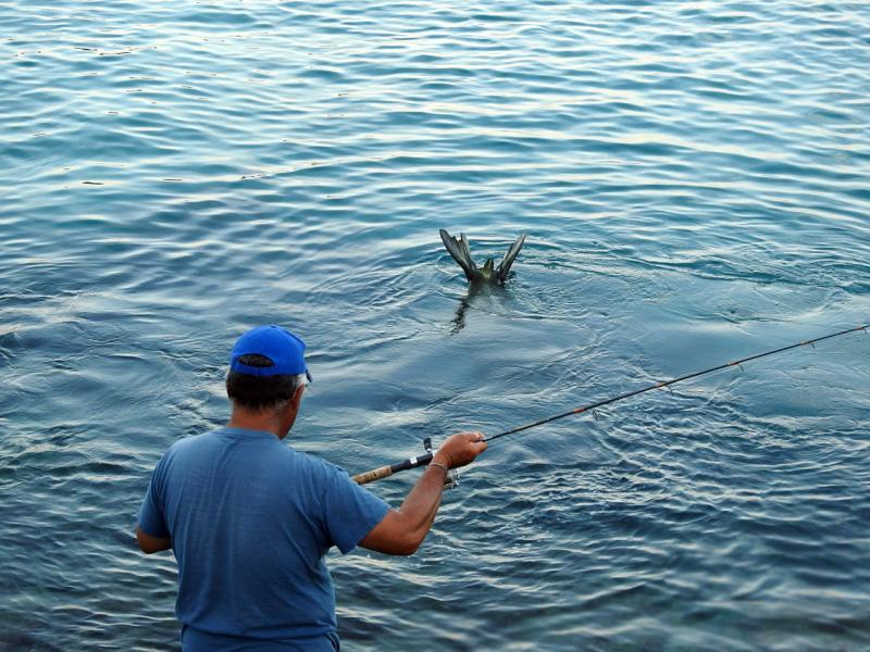 1600x1200-fisherman-BBilland.jpg