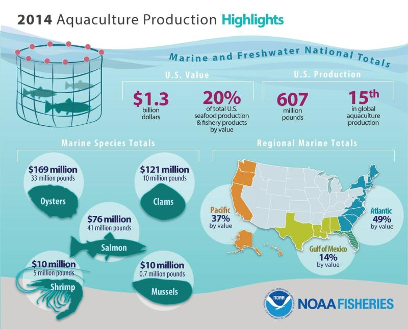 2014 Aquaculture Infographic.jpg