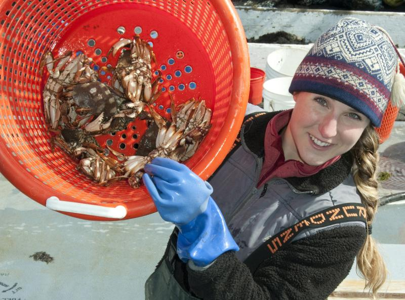 Basket of jonah crabs being held by Anna Mercer.