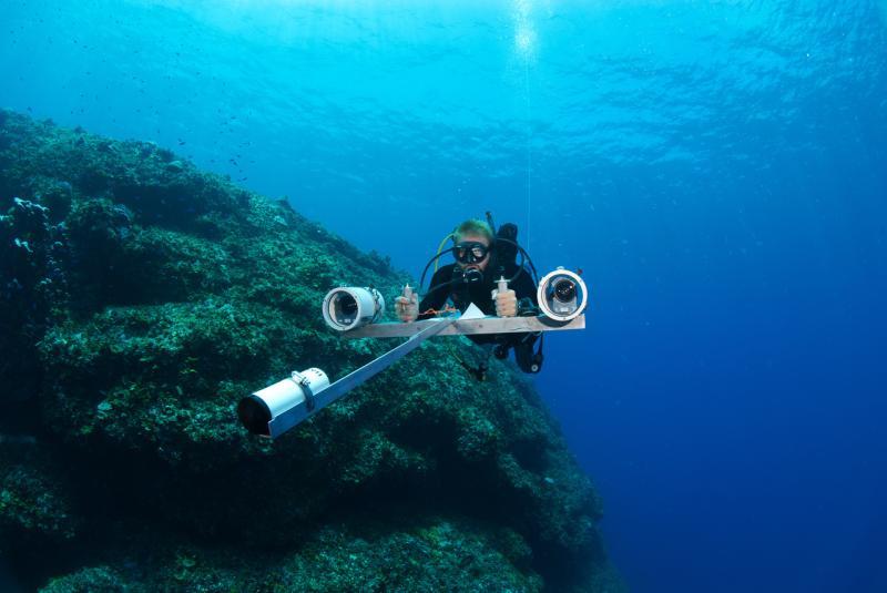 3872x2592-diver-Brett-Taylor-NOAA-PIFSC-Steven-Lindfield.jpg
