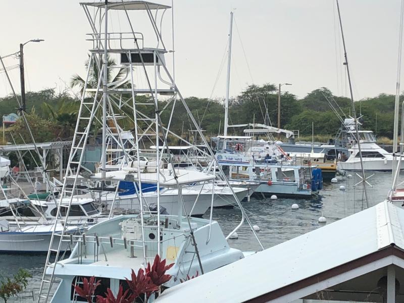 4032x3024charterboats.jpeg