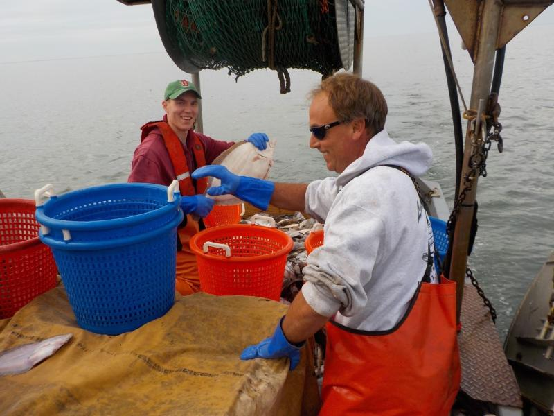 Captain of fishing vessel and observer working together.