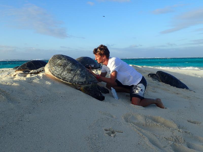 4608x3456-NOAA-PIFSC-FFS-sea-turtle-biologist.jpg