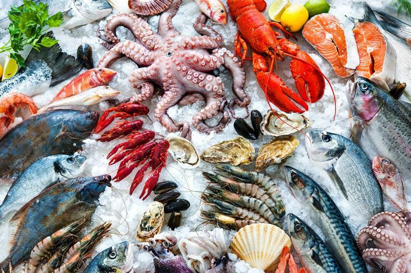 A variety of fresh seafood on a bed of ice, including multiple kinds of finfish and shellfish.