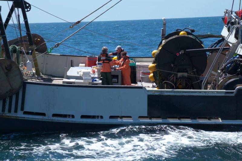 People working aboard survey vessel at sea