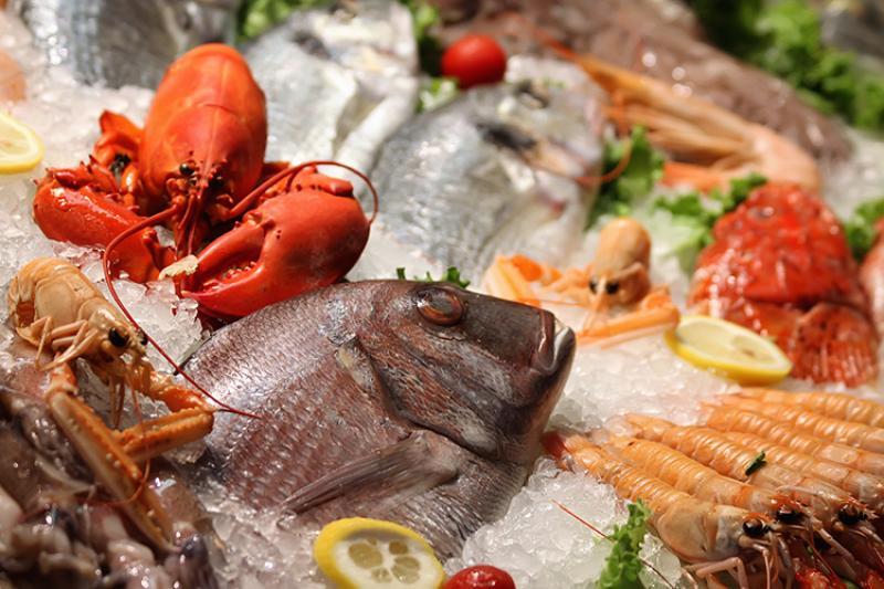 750x500-seafood-on-ice-shutterstock.jpg