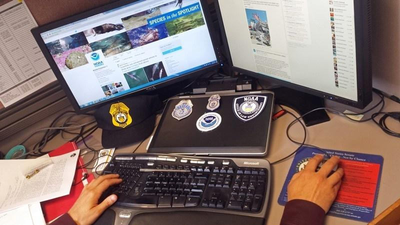 computer-screens-social-media-OLE.jpg