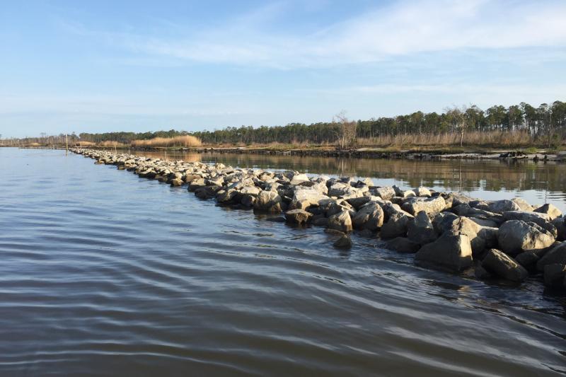 Deepwater Horizon Living Shoreline Oyster Reef 1 Alabama 3264x2176.jpg