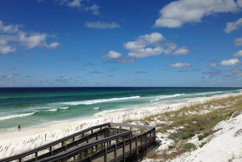 Florida dune restoration deepwater horizon gulf of mexico.jpg