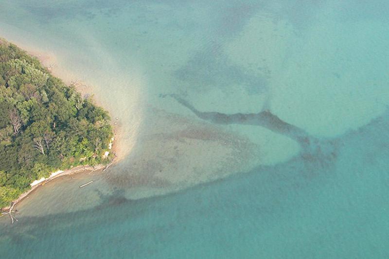 friends-of-the-detroit-river_sugar-island_750x500.jpg