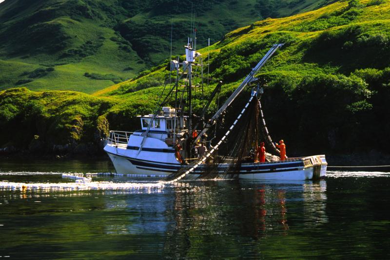 Commercial Fishing near Kodiak Island Alaska