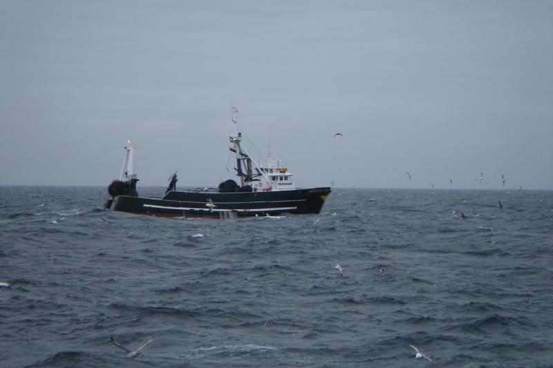 GOA_trawler.jpg