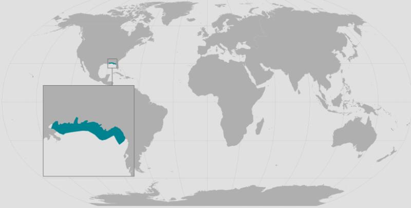Gulf Sturgeon Range_Inset_rev.png