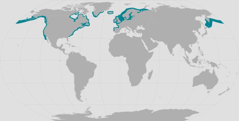 Harbor Seal Range.png