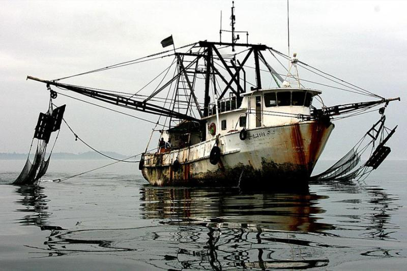 illegal-fishing-Gabon-2011.jpg