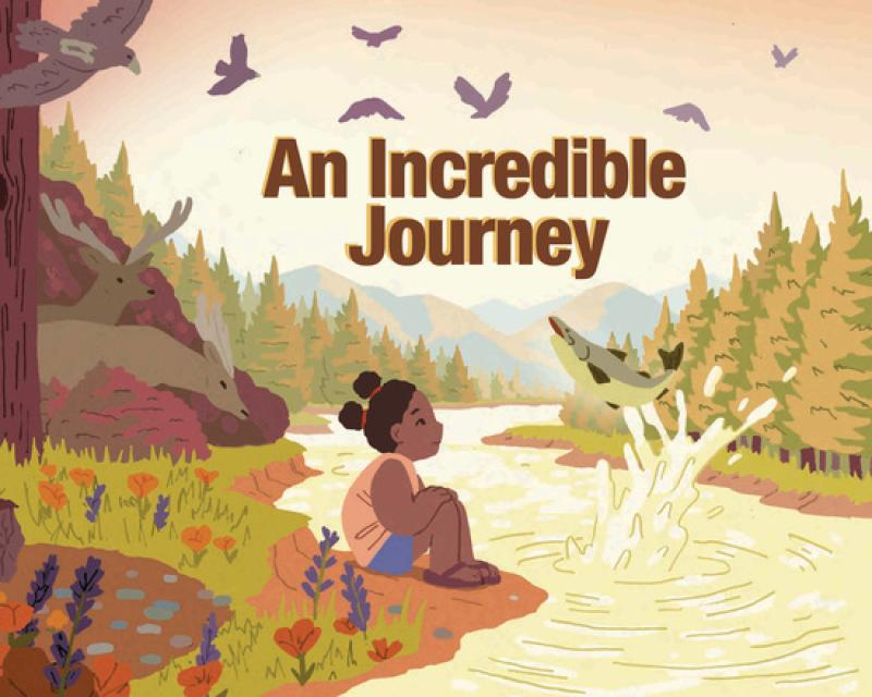 incredible-journey-cover.jpg