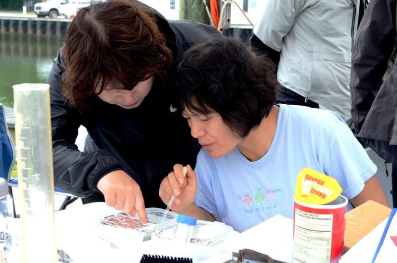 Drs. Judy Li and Hyun Jeong Lim examining specimens