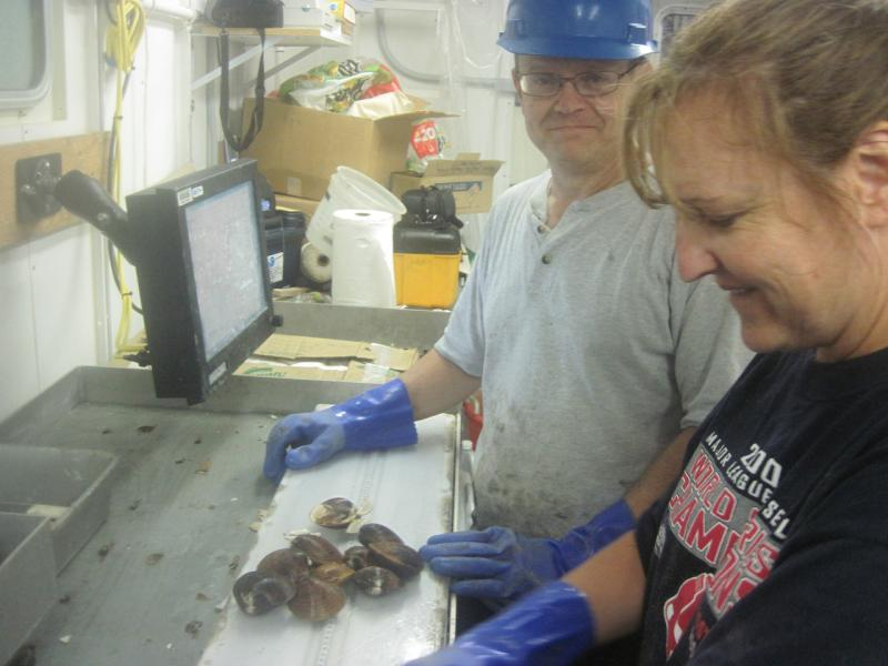 larry-jacobson-clam-survey.jpg
