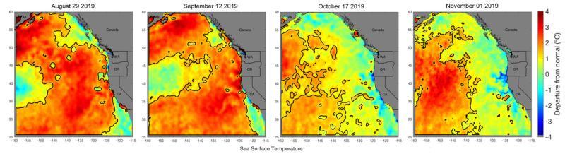 Marine heatwave 4months large 2019 .jpg