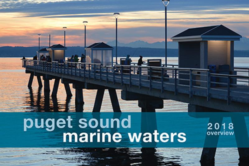 Marine Waters 2018 Cover thumbnail.jpg