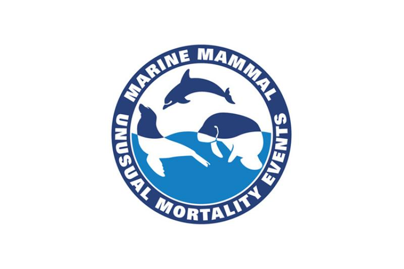 mm_ume_logo.jpg