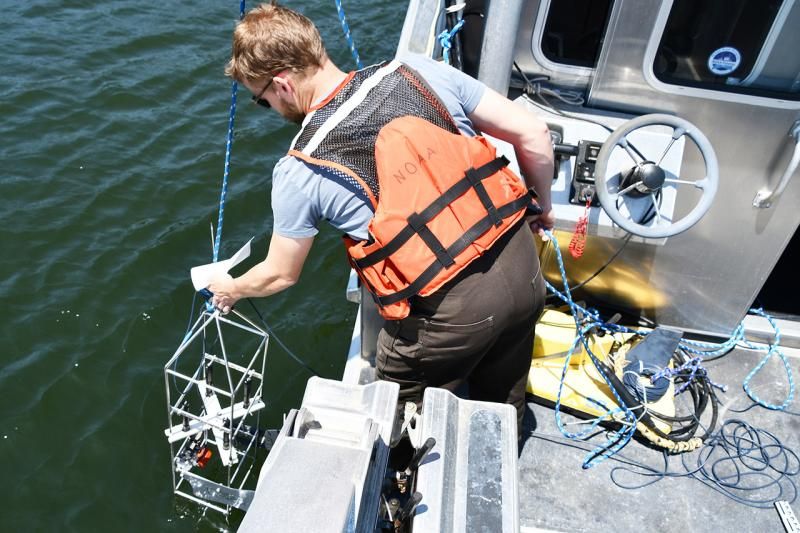 NCBO field work video oysters.jpg