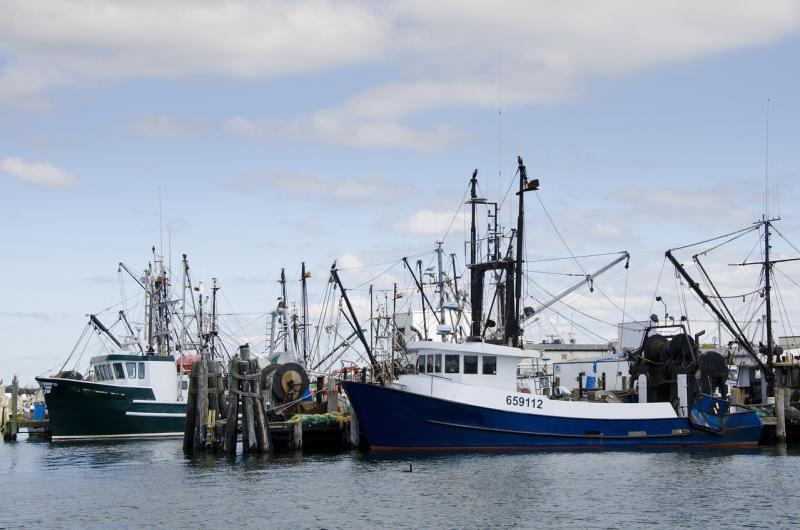 northeast-fishing-boats.jpg