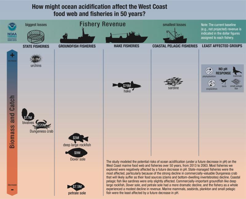 nwfsc-feature-ocean-acidification-dungeness-crab.jpg
