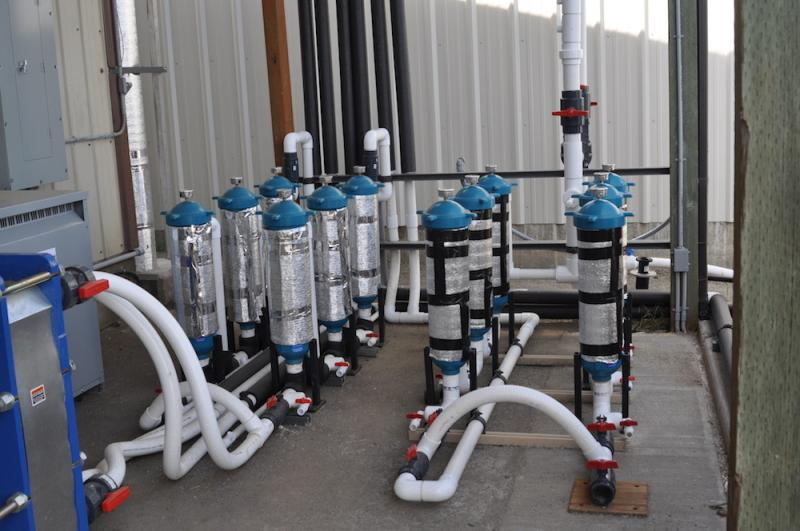 Glass tubes with blue lids, interconnected with piping, part of the new hatchery.