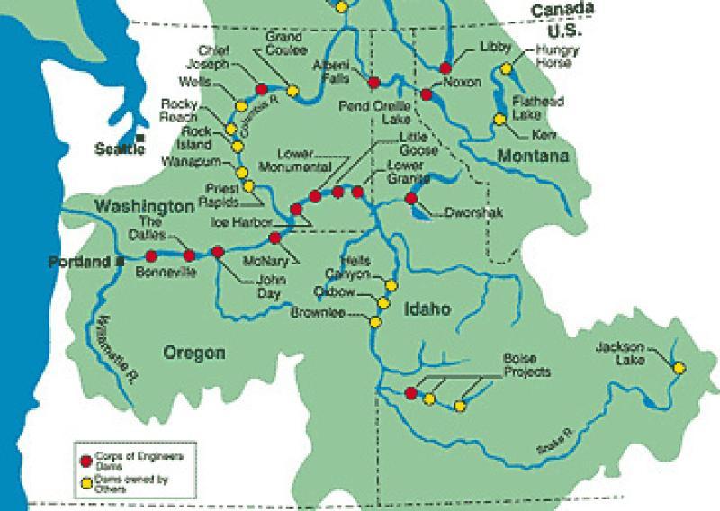 nwfsc-feature-record-salmon-runs-map.jpg