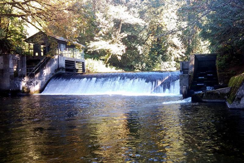 Pilchuck Dam Removal_RCO_TulalipTribe_Dam and fish ladder_750x500.jpg