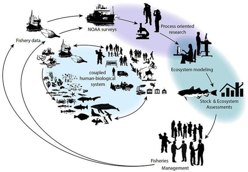 RAPClimateScience.jpg