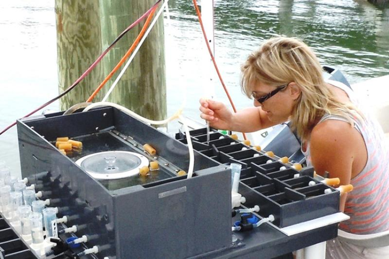 Shannon Meseck working dockside, grey boxes with various inputs and hoses.