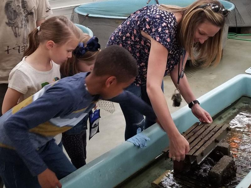 Women and children around the touchtank at the Woods Hole aquarium.