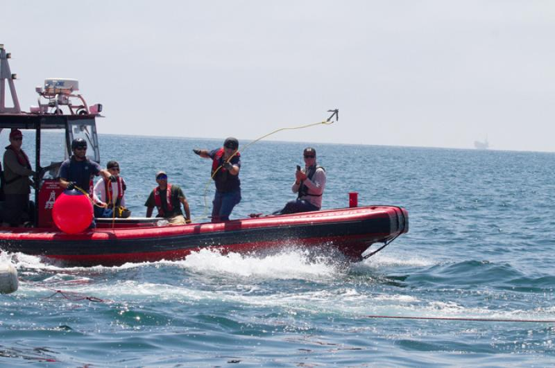 whale_disentanglement_training_02.jpg