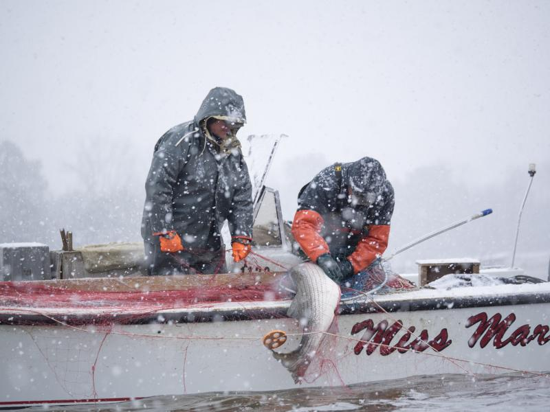 Winter-rockfishing.jpg